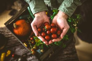 Ortaggi biologici per dieta plant-based