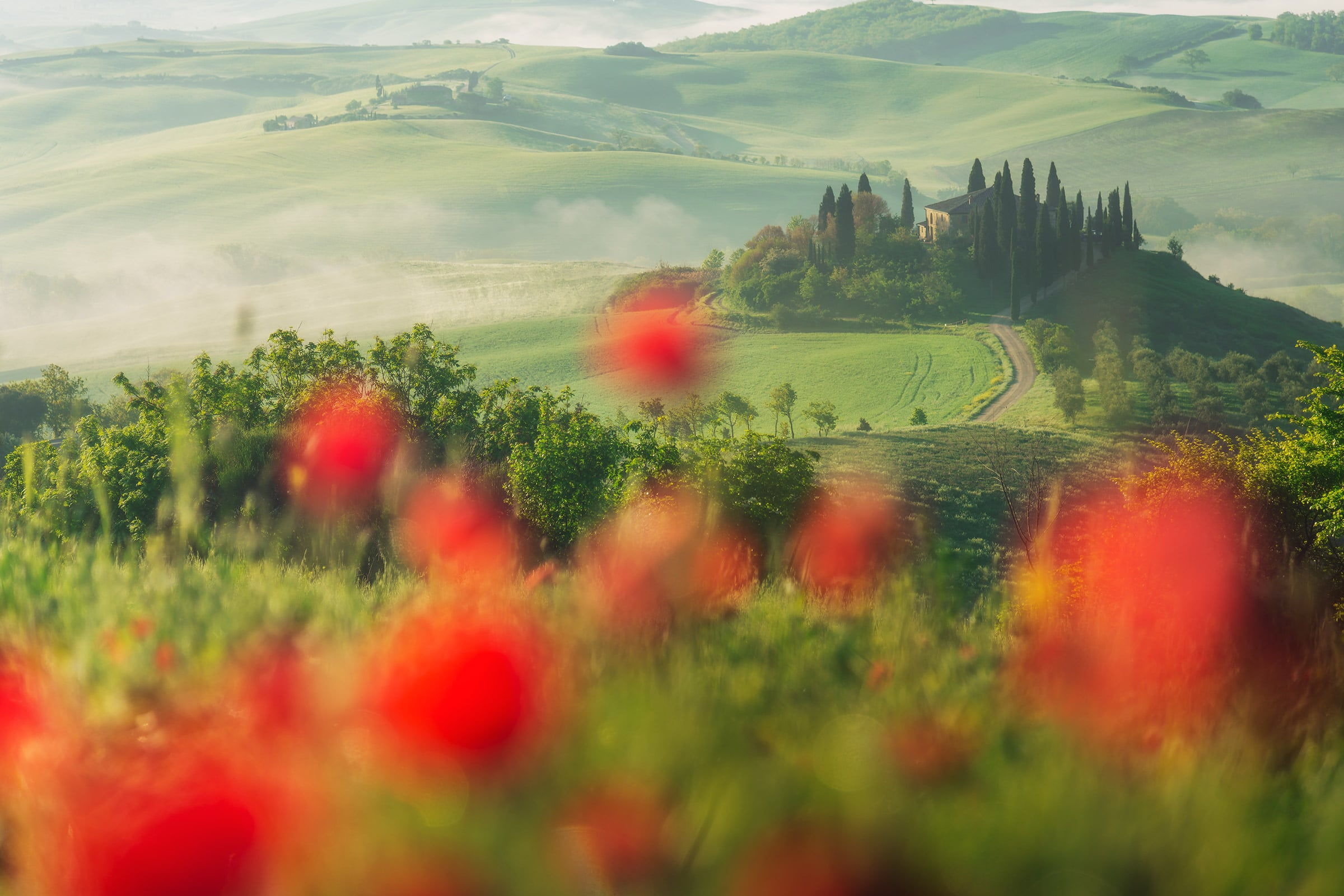 photo tour of tuscany in spring