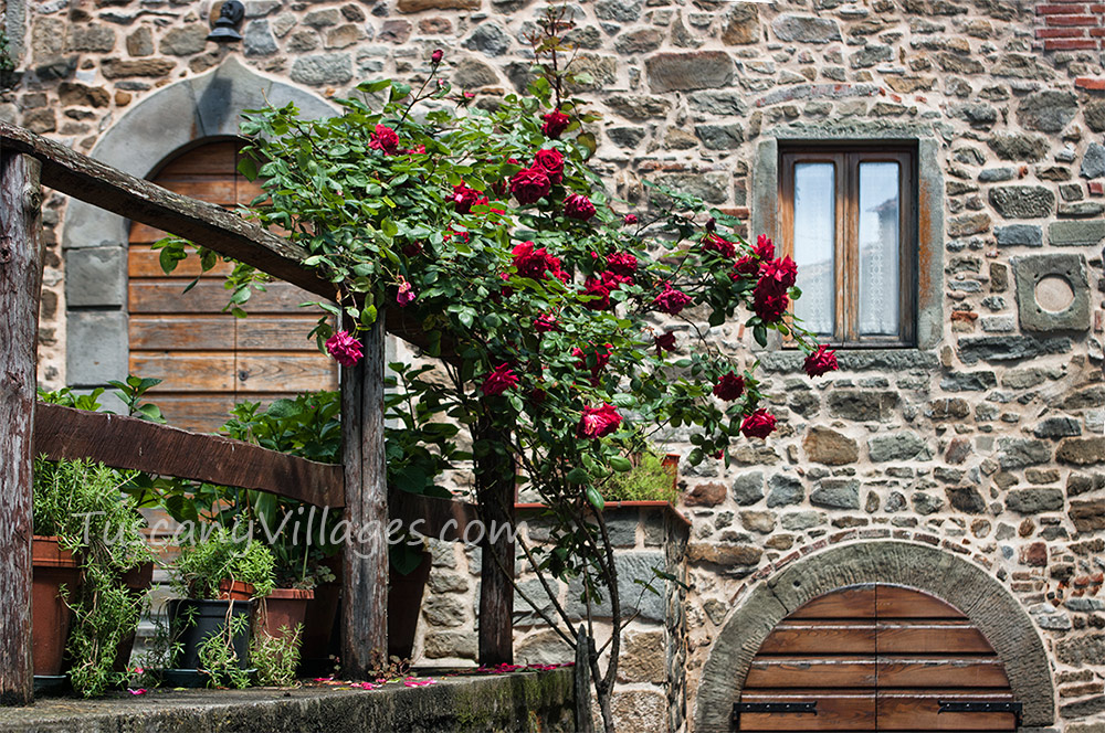 Arch doors and roses