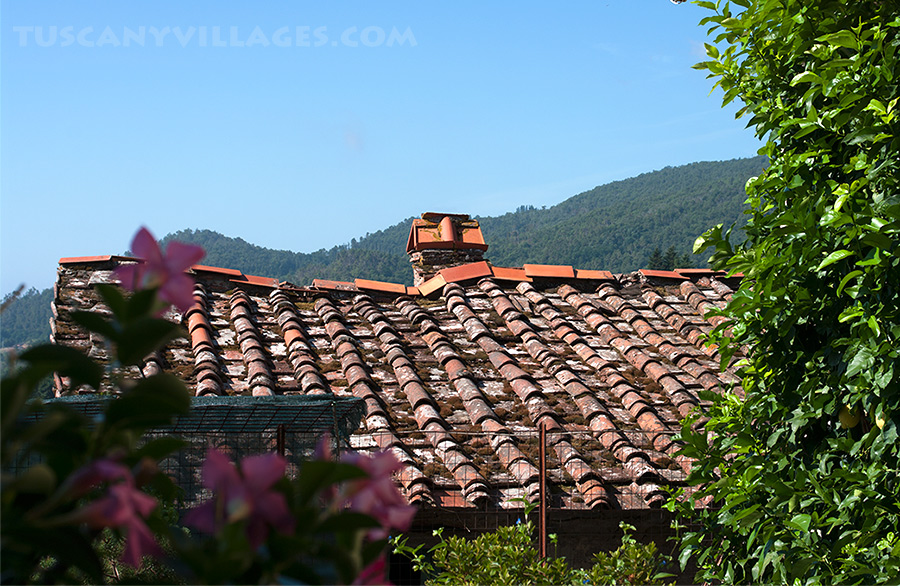 Terracotta rooftop Tuscany