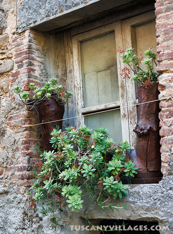Old Tuscan window with plants