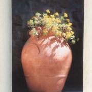 terracotta vase yellow flowers canvas
