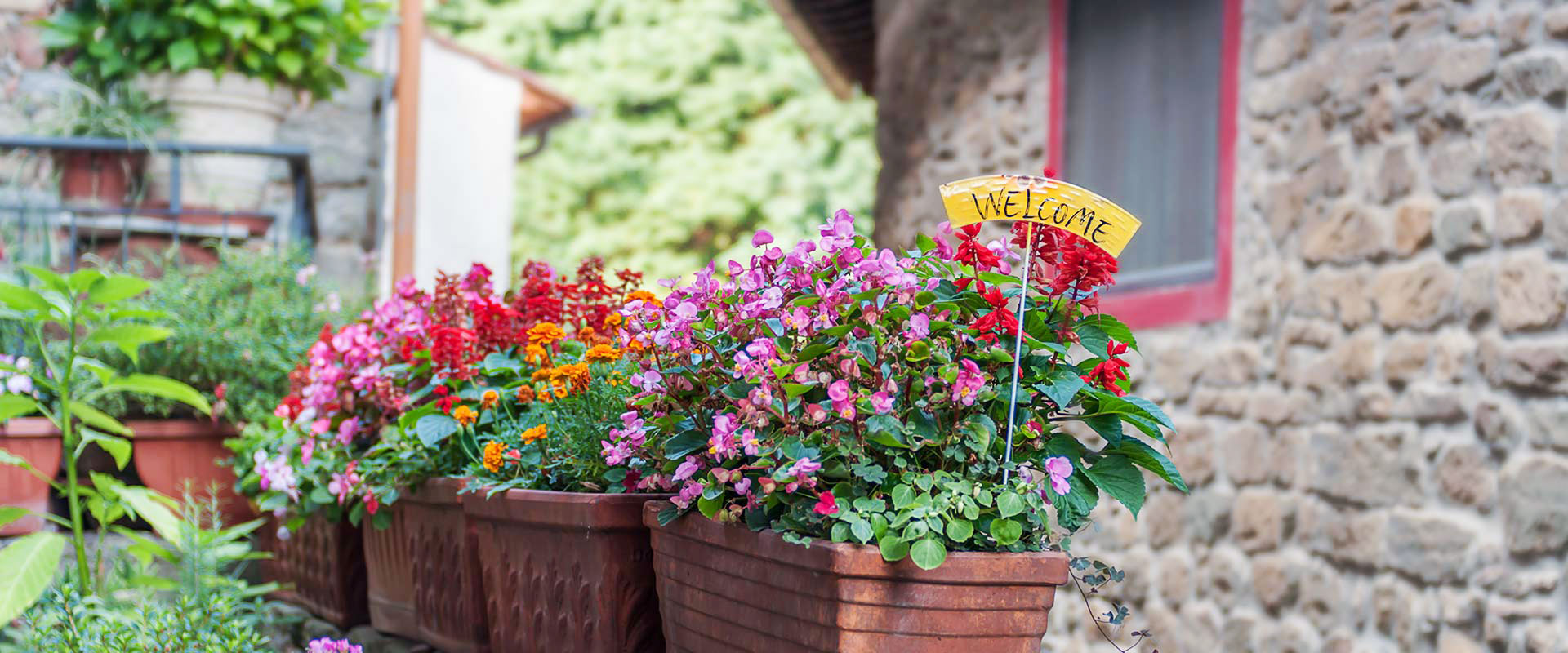 flower pots in Tuscany, Vellano