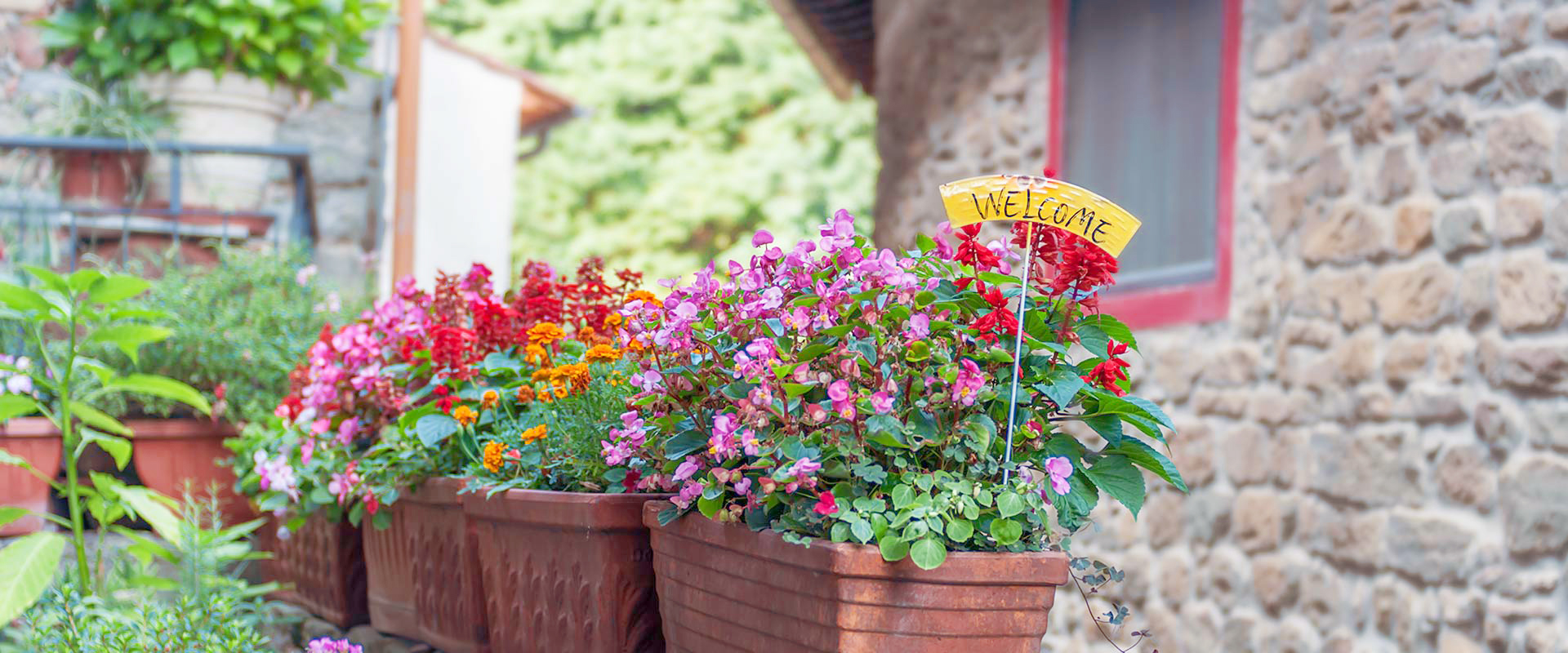Tuscany Villages Flowers