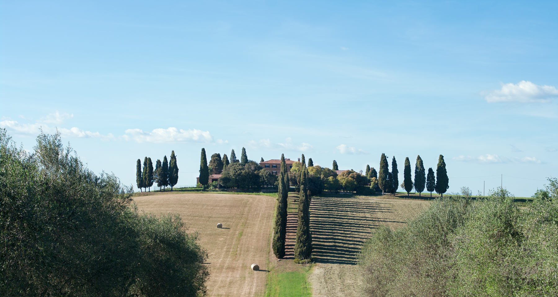 Siena, Val di orcia, farmhouse and cypress trees