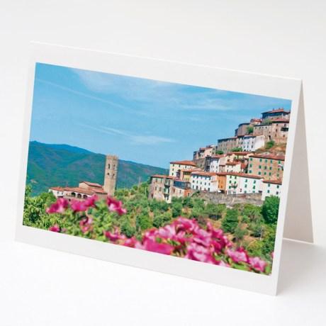 Vellano Cards