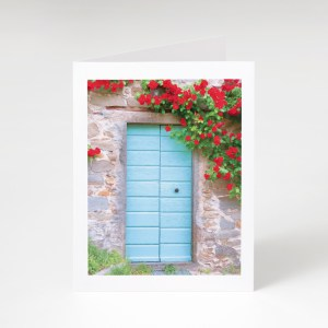 uscan Door and Flowers Greeting Card