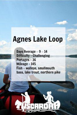 Agnes Lake Loop pin