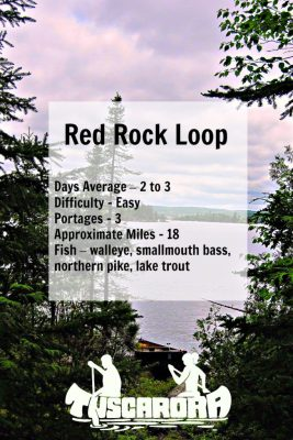 Red Rock Loop Pin
