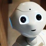 robot contratacion seguros