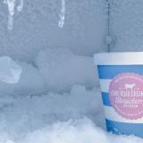 ahorrar espacio en el congelador