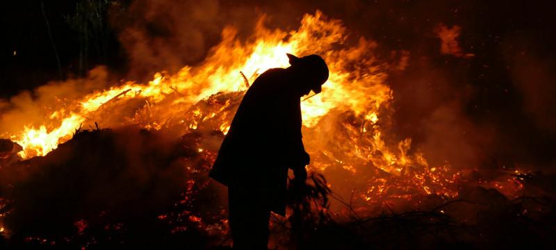 ¿Quién paga los daños ocasionados por incendios forestales?