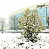 Qué daños cubre el seguro ante una gran nevada