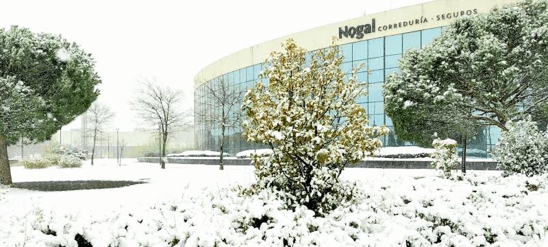 daños seguro nevada