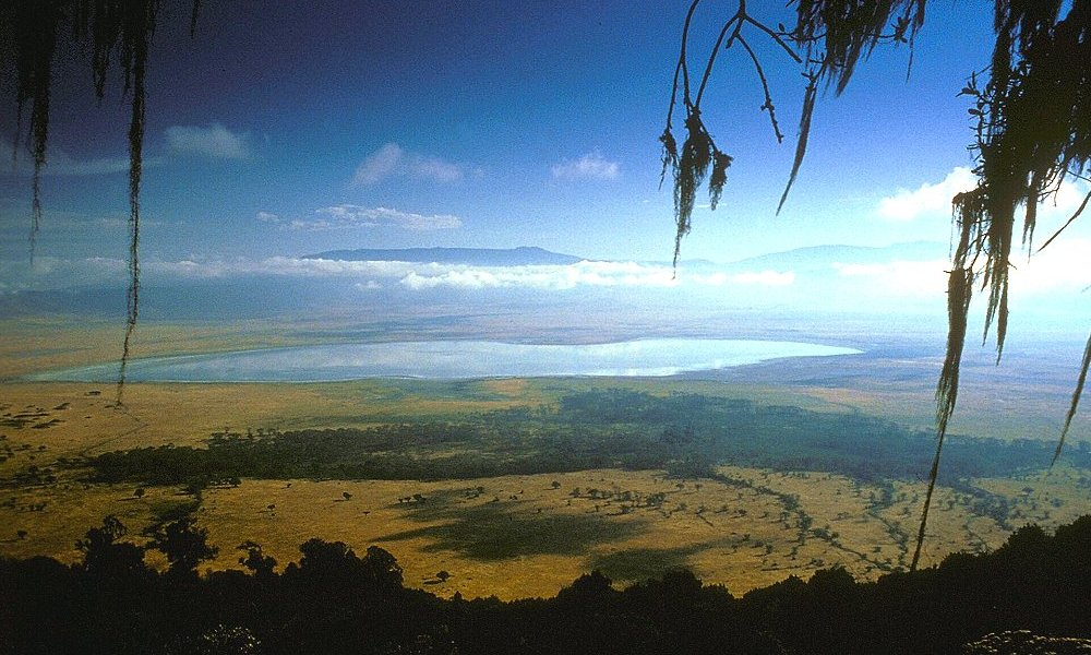 Kilimanjaro Safari Ngorongoro
