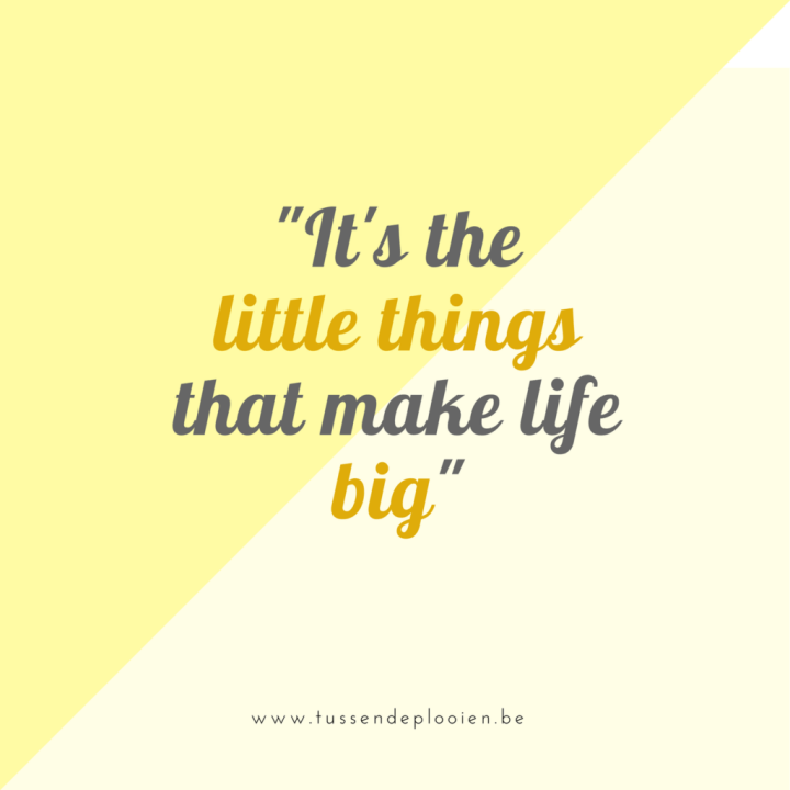 Inspirerende woorden - Quote: it's the little things that make life big