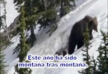 Este año ha sido, montaña tras montaña - Roger Osorio - #musicacristiana #diadelseñor