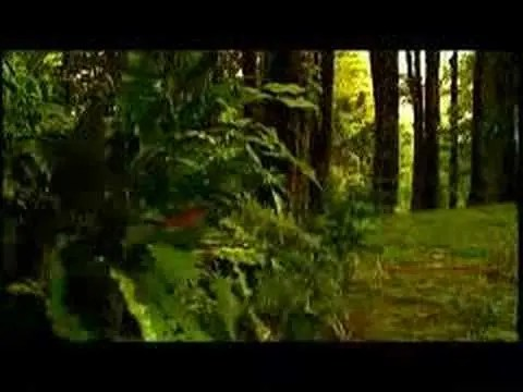 Jennifer Salinas - Video: Te Creere