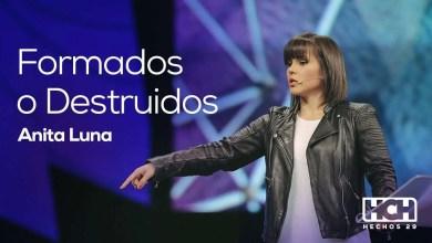 Photo of Anita Luna – Formados o Destruidos – Hechos 29, 2014.