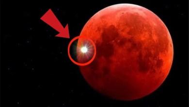 Photo of Eclipse lunar Enero 2019, Super Luna y Luna de Sangre