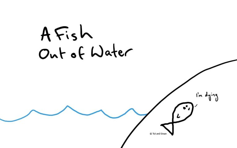 Tut and Groan A Fish Out of Water cartoon