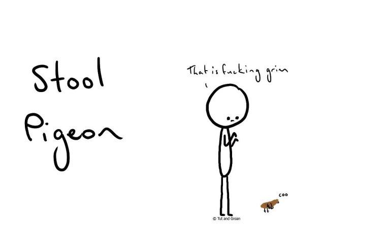 Tut and Groan Stool Pigeon cartoon