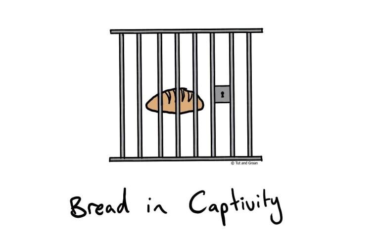 Tut and Groan Bread in Captivity cartoon
