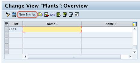 define plant in SAP new entries