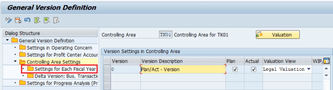 Settings for Fiscal Year - maintain versions