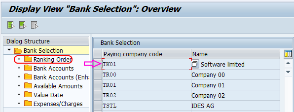 Automatic Payment Program Run in SAP -bank determination