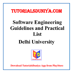 Software Engineering Guidelines and Programs List PDF