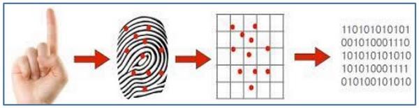 Fingerprint Recognition System