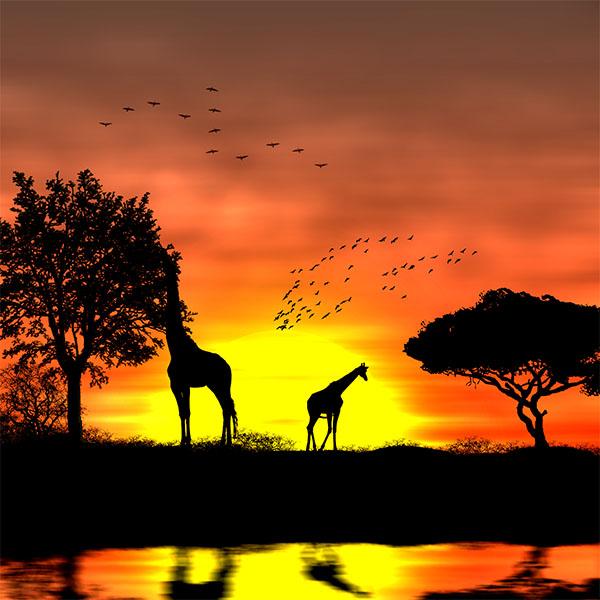 """Résultat de recherche d'images pour """"coucher de soleil"""""""