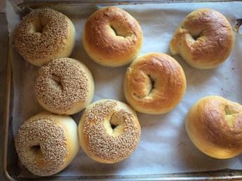 East Coast Style Bagels