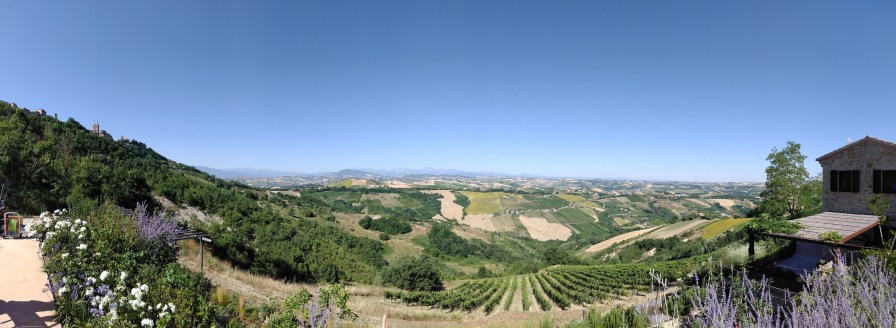 Panorama of summer on the farm