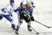 Alps Hockey League: il punto campionato al 18 ottobre