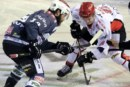Alps Hockey League: alla scoperta del nuovo format 2018-2019
