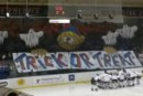 Alps Hockey League: il Milano Rossoblu verso l'addio, al suo posto una nuova Milano Bears?