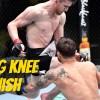flying knee finish ufc