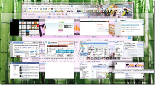 Firefox-3.6-Visual-Tab-Switch-Visualizza-Tutte-Le-Schede