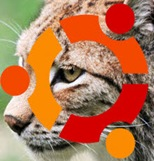 Ubuntu-10-04-lucid_lynx