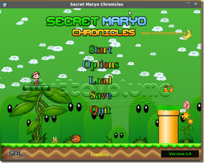 Secret_Mario_Chronicles