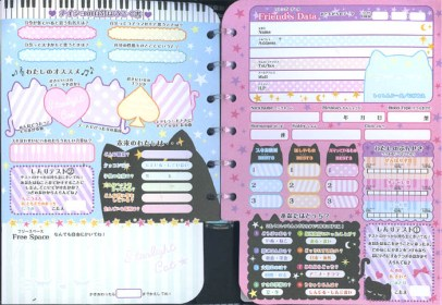 An example of a profile notebook