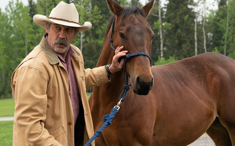 59d770091 Amber Marshall | TV, eh?