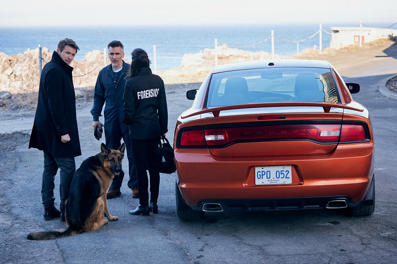 Two men, a woman and a dog stand next to a parked car.