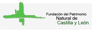 FundacionPatrimonio