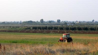 Photo of ENCUESTAS SOBRE LA ESTRUCTURA DE LAS EXPLOTACIONES AGRARIAS EN 2013