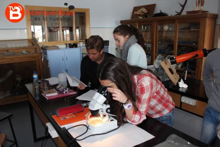 Observación de macroinvertebrados con lupa binocular