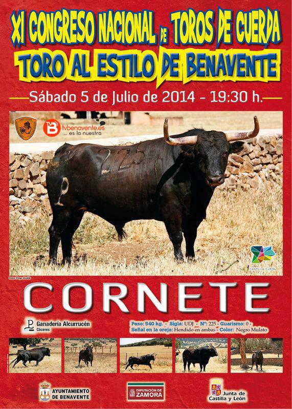cornete