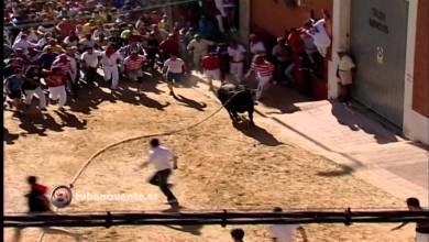 Photo of VIDEO: SALIDA DEL TORIL DE BONARILLO, TORO ENMAROMADO 2014 DE BENAVENTE